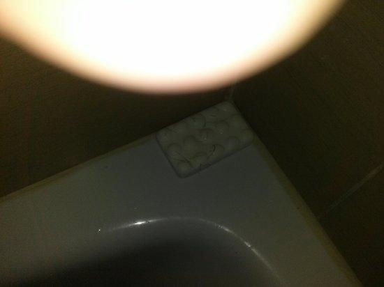 Wyndham Garden Midland: PUBIC HAIR SOAP ON TUB