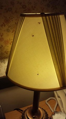 Spring House Inn: Lampshade by the bed