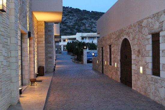 Cactus Royal Resort: Территория отеля