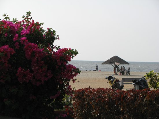 Ayurveda Sanctuary: view of a beach from a window