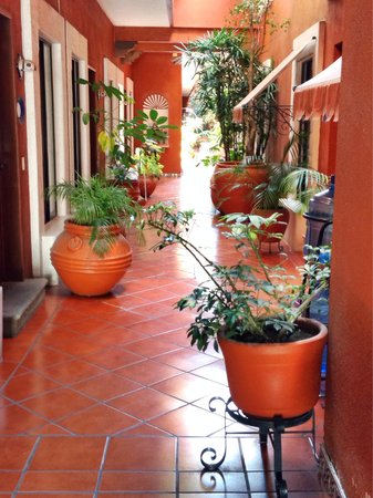 Suites del Centro: Natural light in entrance walkway