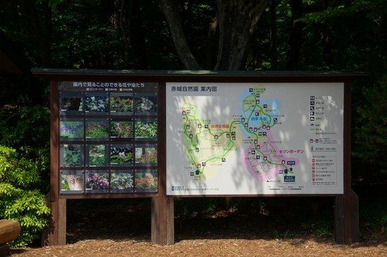 Akagi Nature Park : 赤城自然園