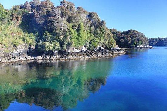 Rakiura Charters & Water Taxi: Beautiful waters of Paterson Inlet
