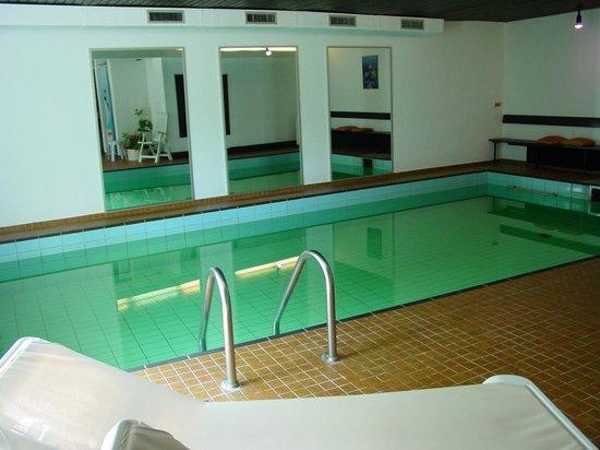 Hotel Haus am Hochwald: Unser Schwimmbach (29 Grad/Ozon statt Chlor)