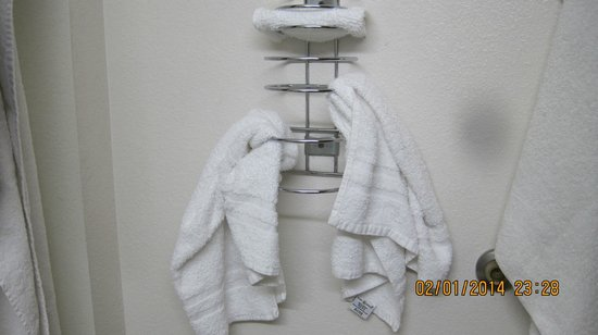 Super 8 by Wyndham Cedar City: this is the towel bar I guess