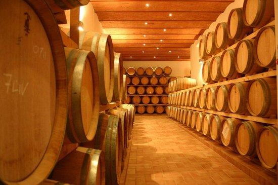 Casalvento Winery : Barrells' Room