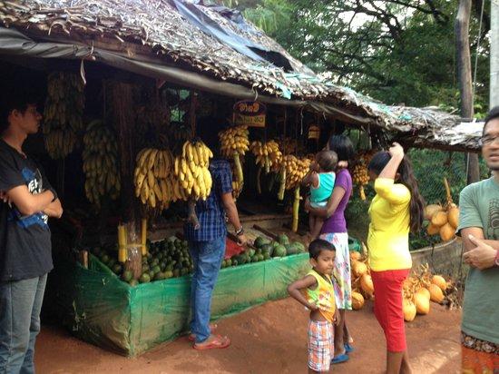 Sundaras Resort : shop