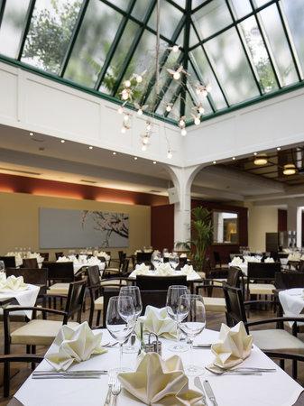 Austria Trend Hotel Ananas: restaurant