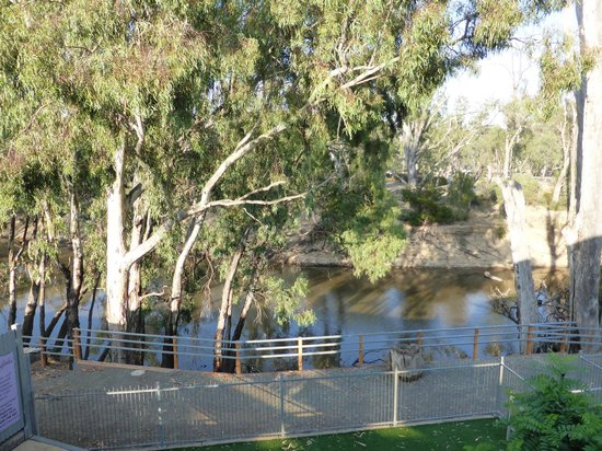 Adelphi Apartments: river view from your room