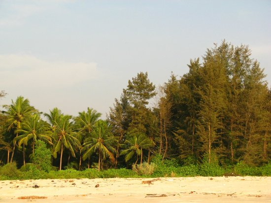 Ayurveda Sanctuary: nature on the shore