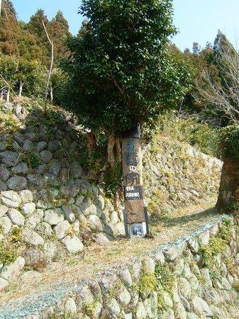 Museum Mori : 看板付ける、別名、森町癒しの家