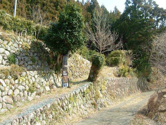 Museum Mori : 博物館森上り口の坂。