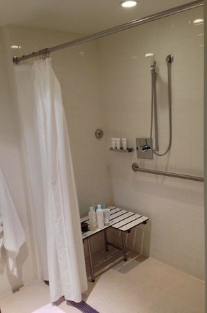 The Modern Honolulu: The bathroom - without the bath.