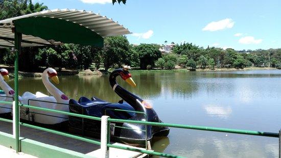 Parque das Águas: Pedalinho