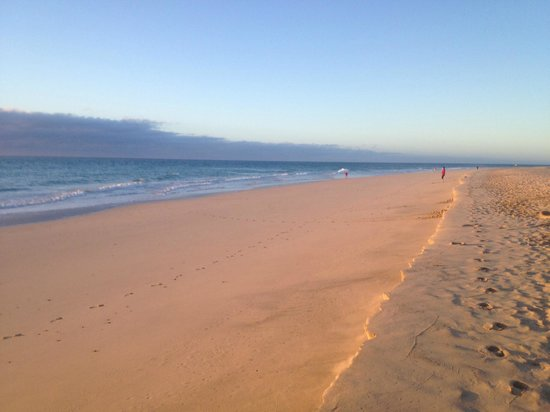 Occidental Jandia Royal Level - Adults Only : Early morning beach