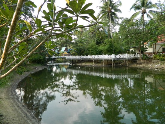 Chang Park Resort & Spa: территория