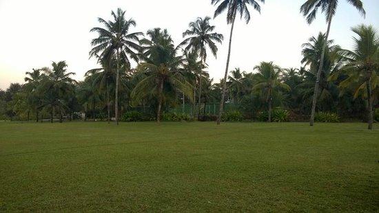 Kenilworth Resort & Spa: playing area