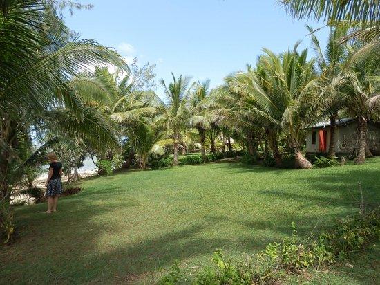 Beach Cocomo: Lovely gardens