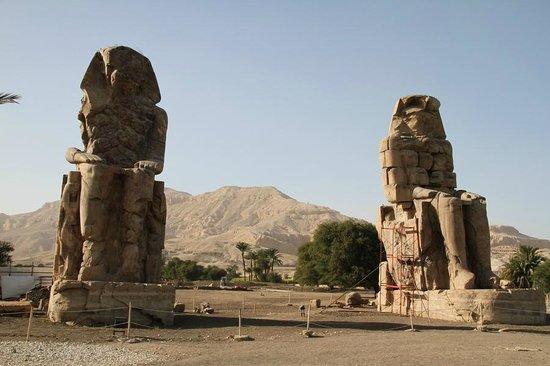 Luxor Taxi -  Day Tours : Memnon colosses