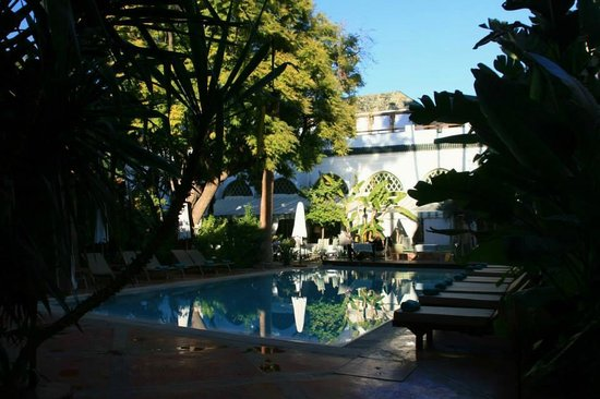 Les Jardins de la Medina : Early Morning by the pool