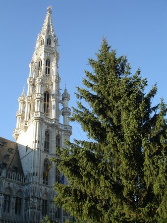 Grand Place: Brussels Town Hall & Belfry
