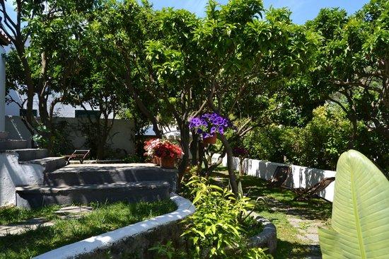 Villa Adriana: giardino