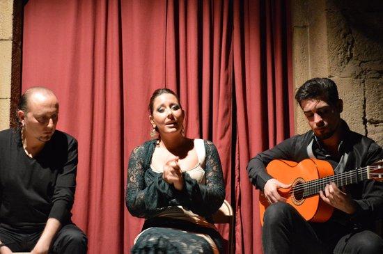 Palau Dalmases: The band