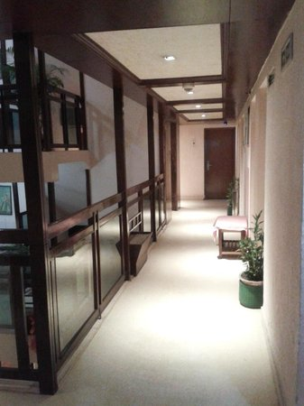 Hotel Nandan: from the room