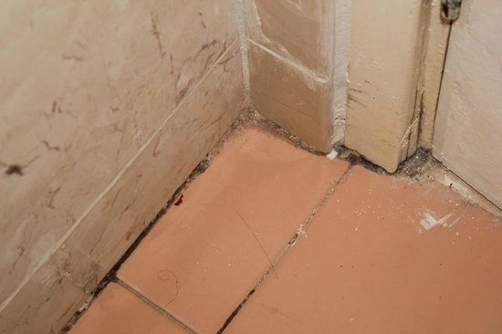 Meliá Santiago de Cuba: Dirty grouting in bathroom