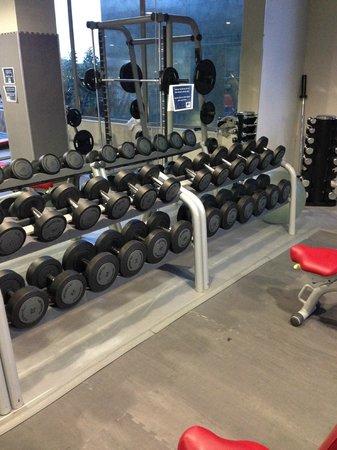 DoubleTree by Hilton Hotel Resort & Spa Reserva del Higueron : Fitness Studio