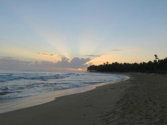 Excellence Punta Cana : Sunrise on the beach