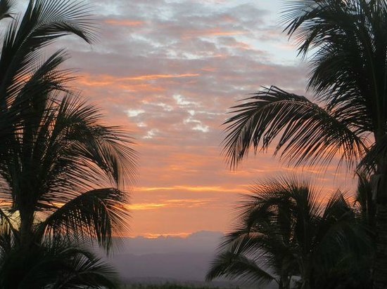 Excellence Punta Cana : Sunset from 6208