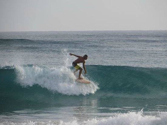 Excellence Punta Cana: Surfer