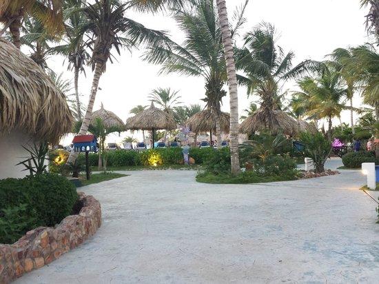 SUNSOL Punta Blanca: Jardin
