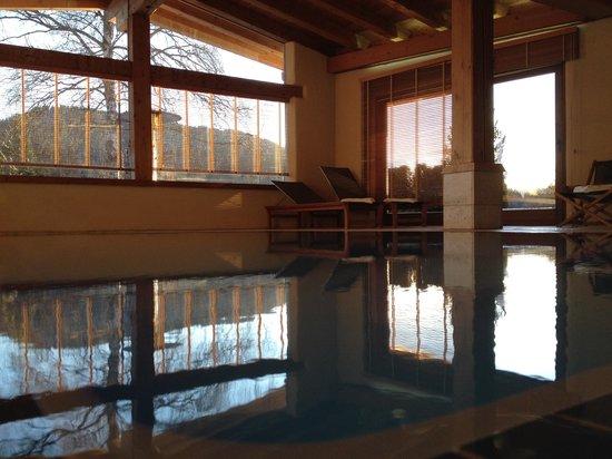 Hotel Princess Bergfrieden: Binnenzwembad