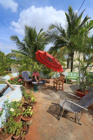 Mysore Bed and Breakfast: Rooftop terrace