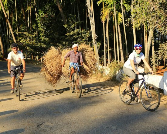 Mysore Bed and Breakfast: On a MyCycle Tour with Stephen