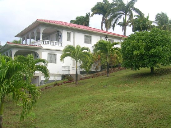 Caribbean Sea View Holiday Apartments : View from garden