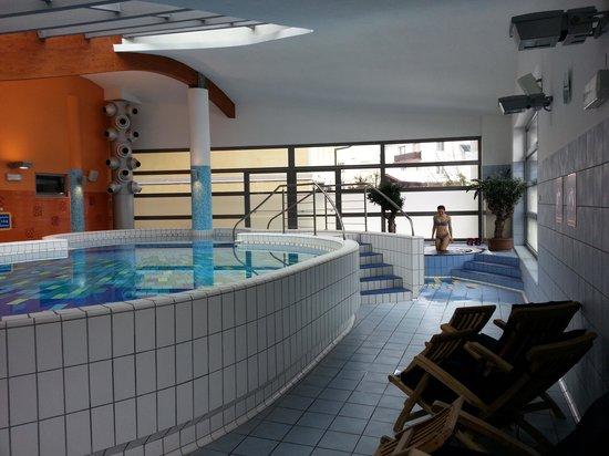 BEST WESTERN PREMIER Hotel Lovec: Termarium