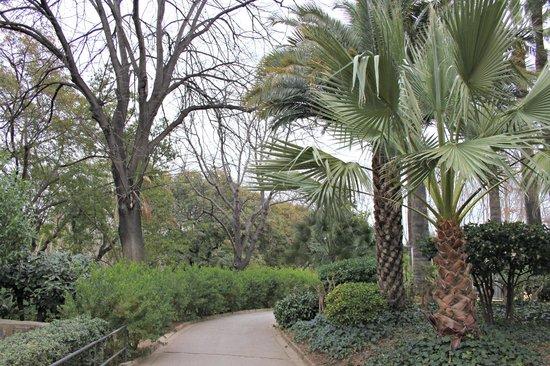 Zoo de Barcelona: Vegetazione