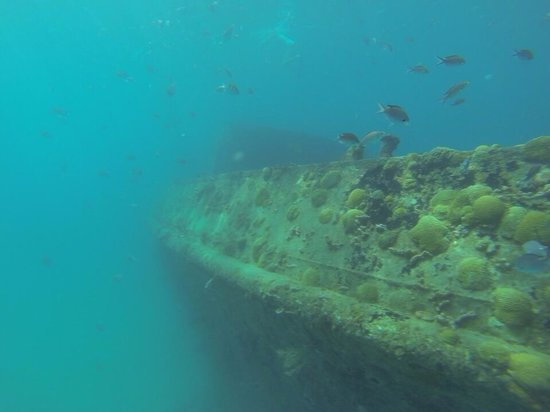 Cliff Sharker: Wreck on marine reserve