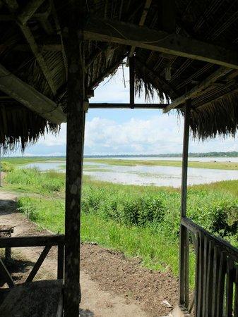 Libertad Jungle Lodge: vue à la sortie de notre chambre
