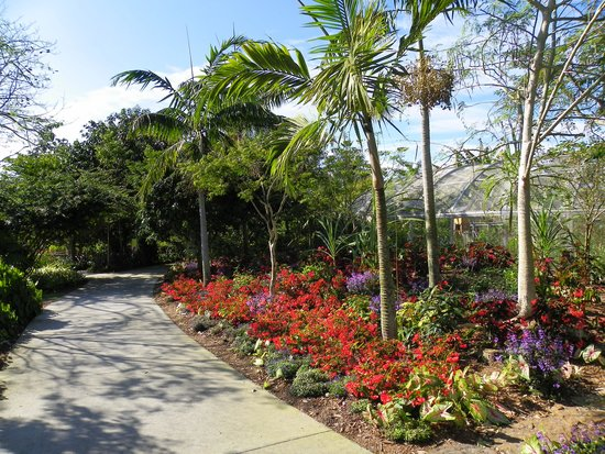 Naples Botanical Garden: Just one of the paths
