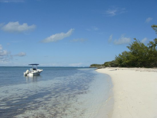Lubbers' Landing : Pelican Cay morning