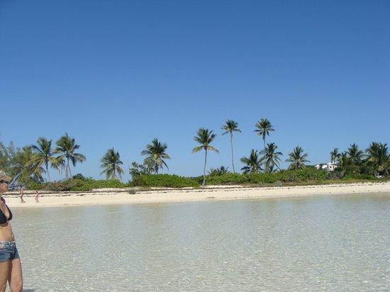 Lubbers' Landing : Tahiti