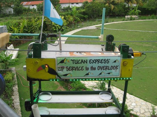 La Casa De Don David: Toucan Express from veranda to lakeside patio