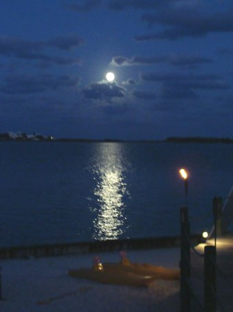 Lubbers' Landing: Midnight Blue