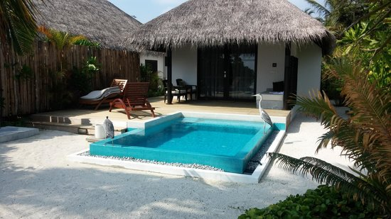 Velassaru Maldives : The room with plunge pool