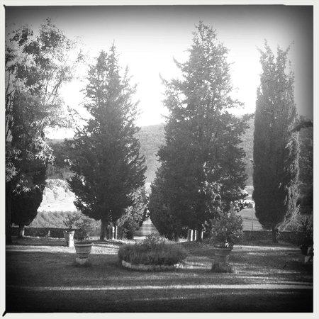 Villa Buoninsegna: avenue view from main building