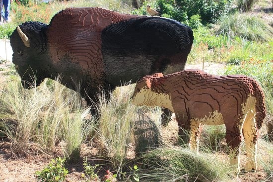 Naples Botanical Garden: Bison made of Legos
